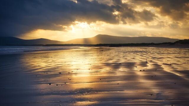 """""""爱尔兰降低9%的增值税税率将于2022年8月到期"""